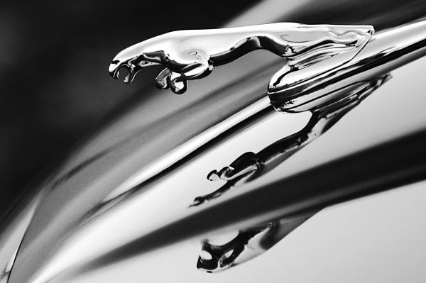 chip-tyuning-jaguar Чип тюнинг Jaguar. Увеличение мощности Ягуар по низким ценам